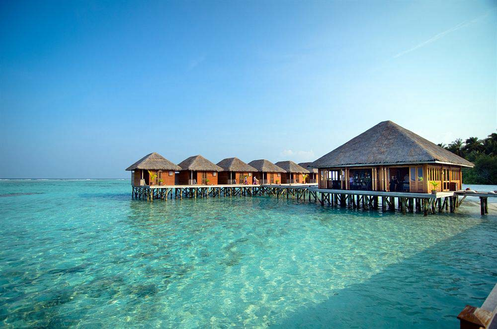 Meeru Island Resort Hotel Review Maldives: The Best Resorts In Maldives